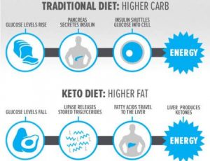 traditional-diet-vs-ketogenic-diet